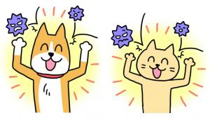 犬、猫、免疫力