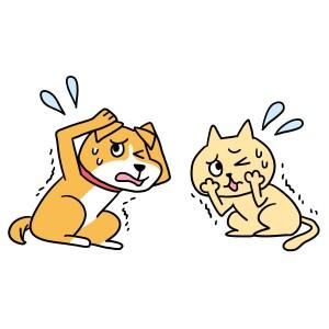 犬、猫のストレス