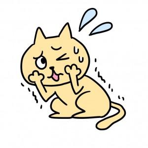 猫 ストレス