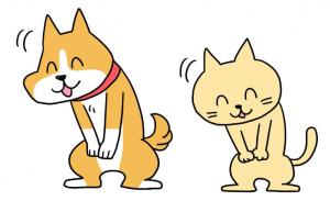 犬猫あいさつ