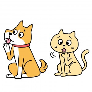 犬、猫 指間炎