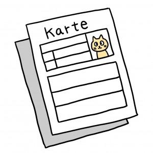 猫 カルテ