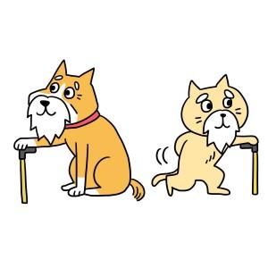 シニアの犬猫