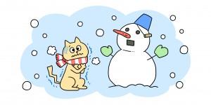 猫の冬対策