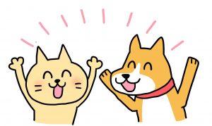 犬、猫喜ぶ