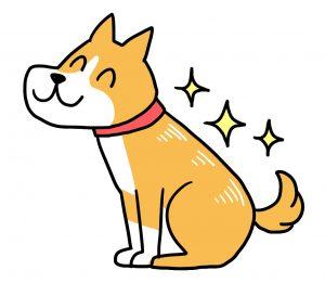 犬の皮膚改善