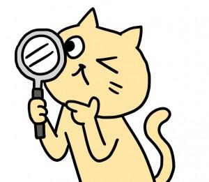 猫 調べている