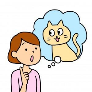 0516飼い主猫イラスト