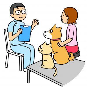 犬猫の治療