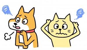 犬、猫の病気
