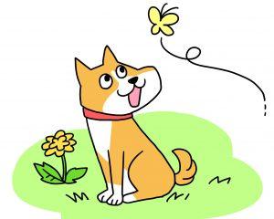 犬の春対策