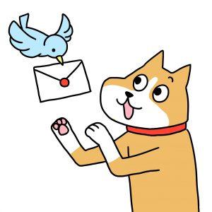 犬 手紙 アンケート