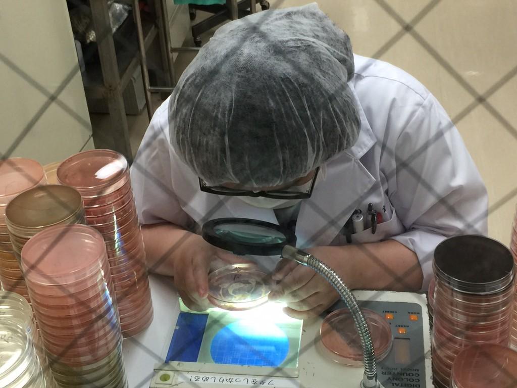 微生物検査
