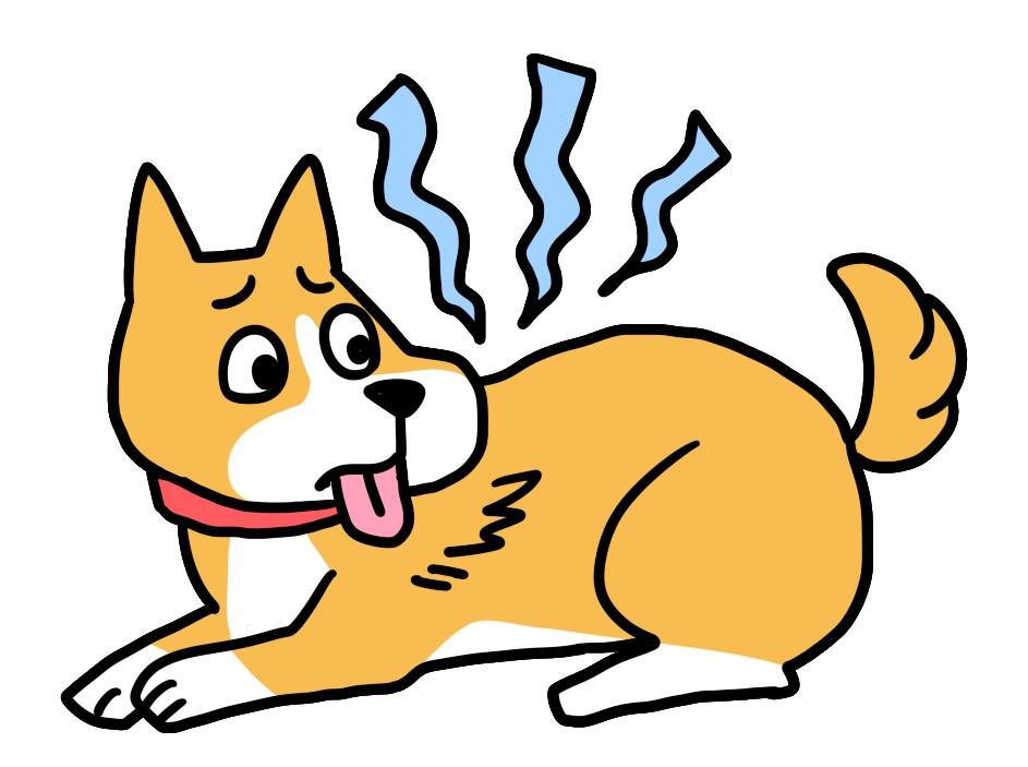 犬の真菌症