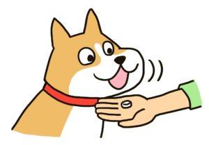 イラスト 犬 サプリ